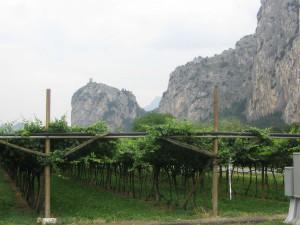 Alpen2005_-IMG_1340