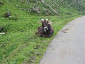 Alpen2005_-IMG_1491